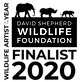DSWF_WildlifeArtistoftheYear2020_Badge_B
