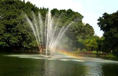 Fontaine flottante lumineuse