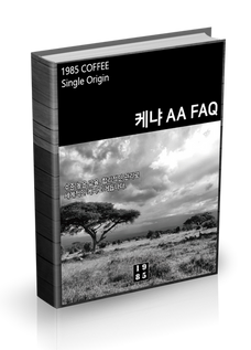 케냐 AA FAQ
