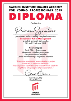 Diplom_Swedish_institute_summer_academy_