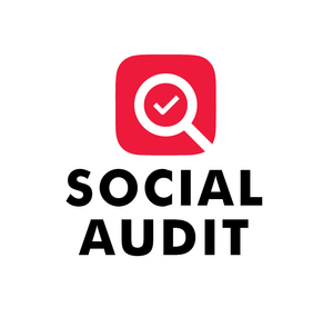 Social Audit Malmö University