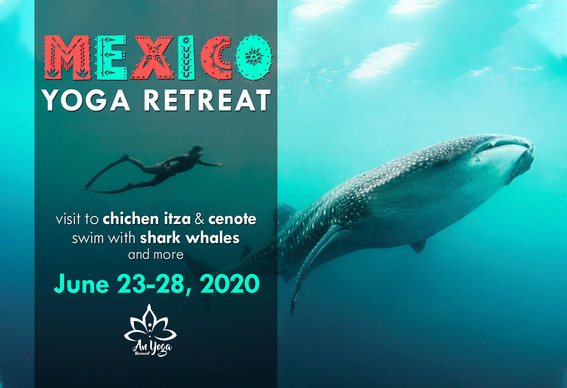 Mexico retreat.jpg