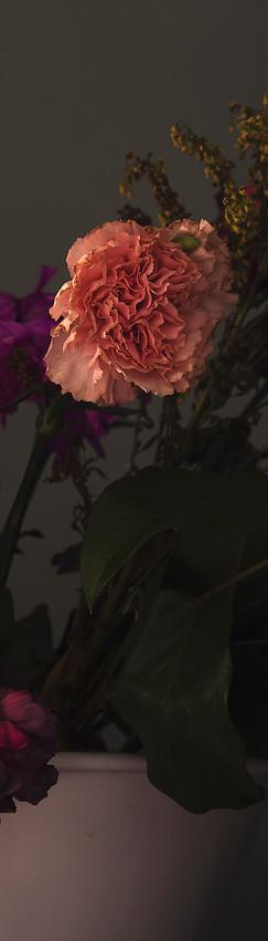 Wilting Flowers Arranged in a Bathtub