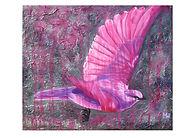 Pink Bird wix.jpg