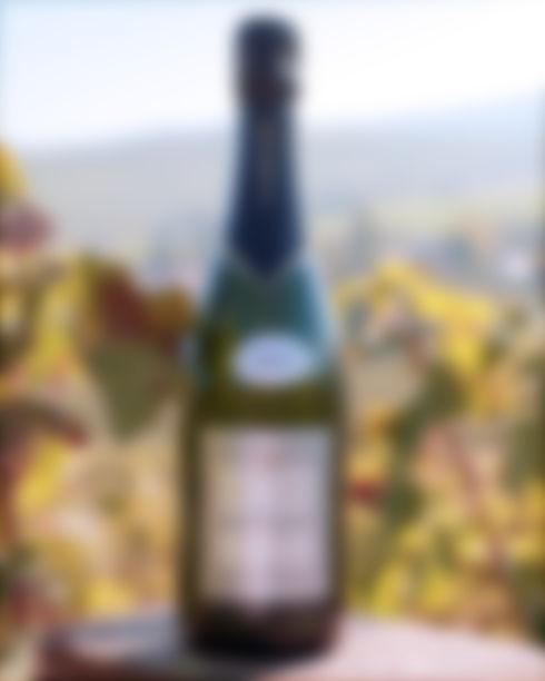 Champagne Millésime 2004 Cédric Boucant