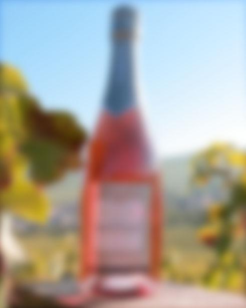 Champagne demi sec Cédric Boucant