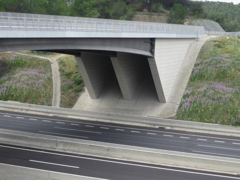 Puente del Cementerio