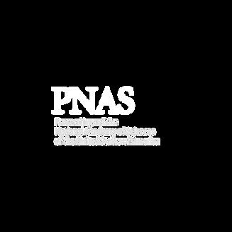 logos highlights5.png