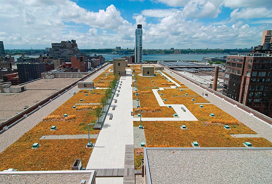 04-IMG_URS_Morgan-Green Roof02.jpg