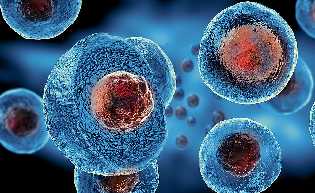 stem-cell-therapy-northeast-knee-joint-i