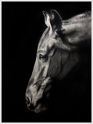 Serenity - Original in Watercolour and Graphite  -  82cm x 60cm - Portrait