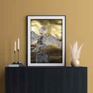 sunning cormorant 1.jpeg
