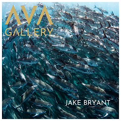 JAKE BRYANT (1).png