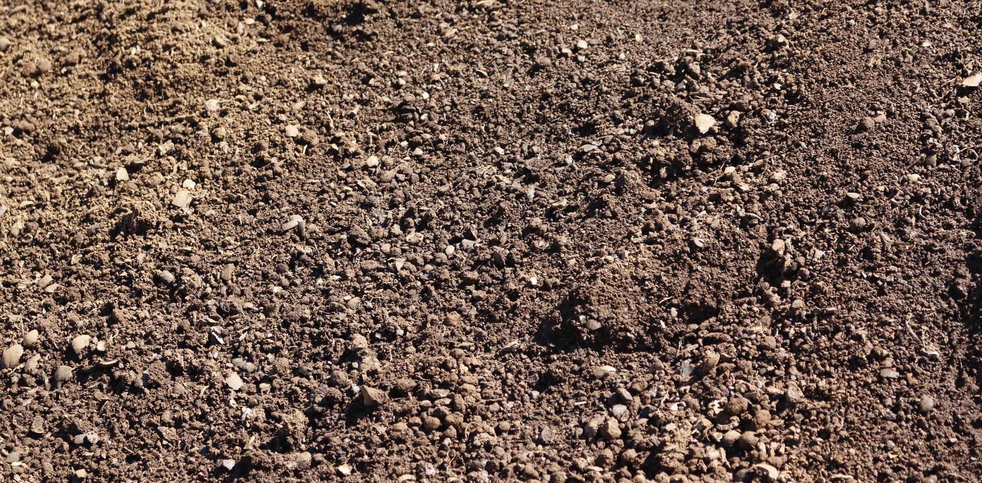 Cinderless Soil