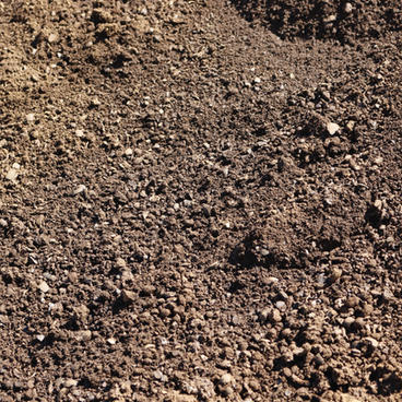 Cinderless / Compost Blend