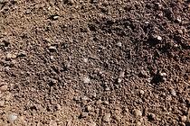Cinderless-Compost-Blend-5.JPG