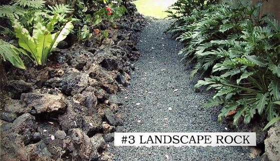 Landscape Rock in Hawaii