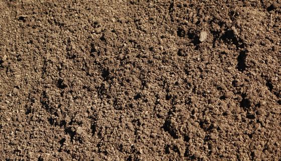 1/3rd Mix at Soil Plus