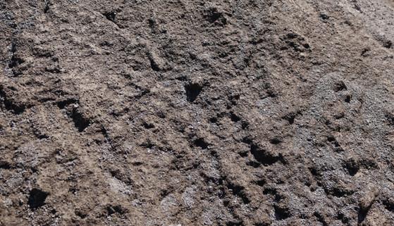 Mortar Sand at Soil Plus