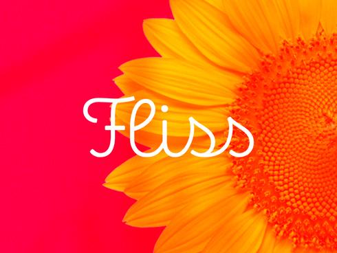 FLISS