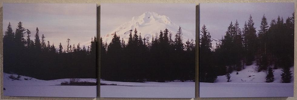 Lone Winter, Mt. Hood