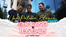 UNA PALOMA BLANCA (Remix)