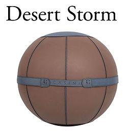 CASINI_Desert Storm.jpg