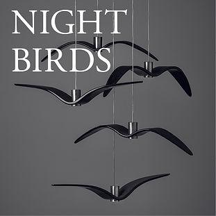 NIGHTBIRDS.jpg