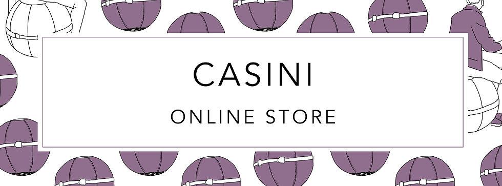 CASINI_top.jpg