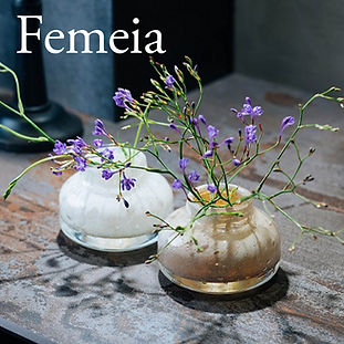 Henry正方形_femeia.jpg