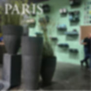 DOMANI_PARIS.jpg
