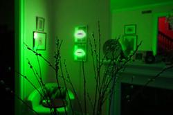 green lips interior2