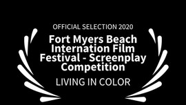 Fort Myers Beach IFF