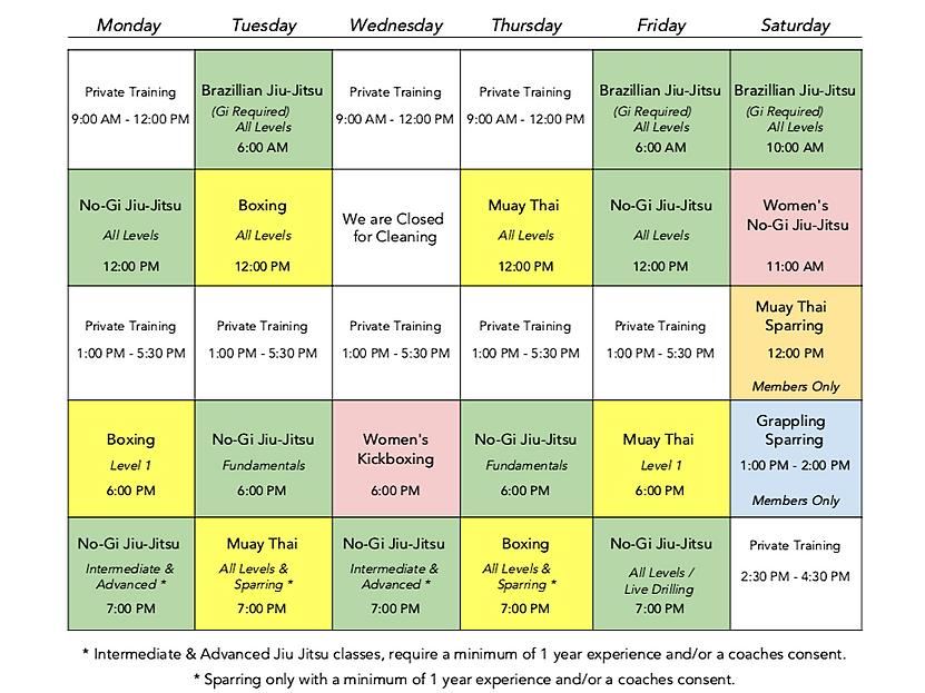 Danzig MMA 2020 Class Schedule