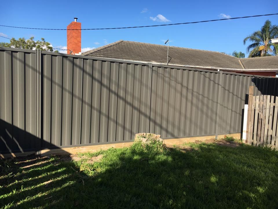 photo fencing (97)