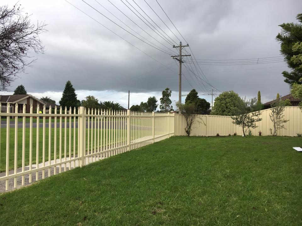 photo fencing (84)