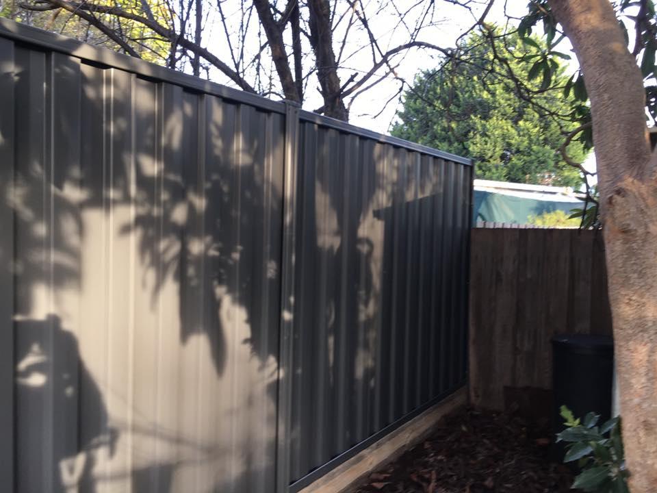 photo fencing (94)