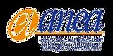 02-Anea-logo-2_edited.png