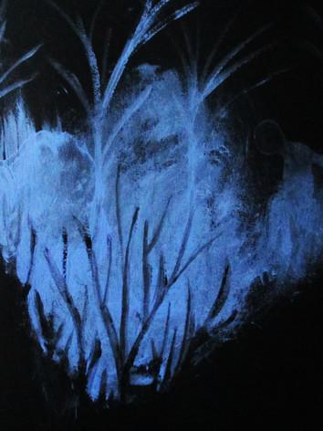 bleu nuit 26