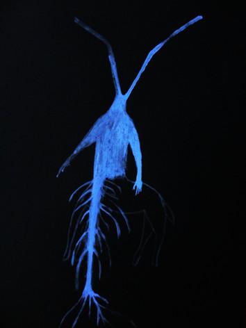 bleu nuit 17