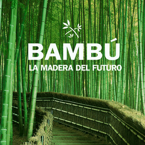 Bambú: La madera del Futuro