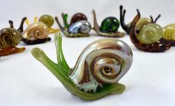 Glass Snails