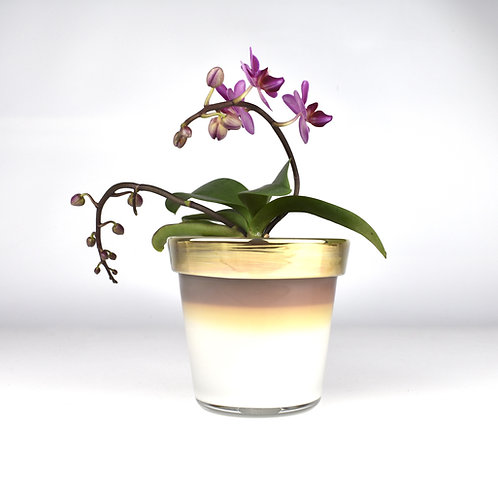 Glimmer Planter