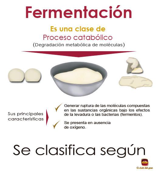 ¿Qué es la fermentación?