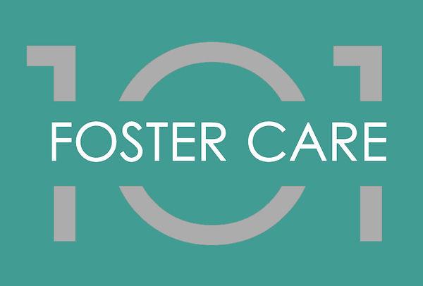 foster care101_logo.jpg