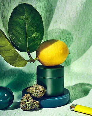 Jess Anderson Toronto Props Interiors and Still Life Styling - Product Styling for Robinsons Cannabis with Clea Forkert and Matthew Boyd Photos Graydon Herriott
