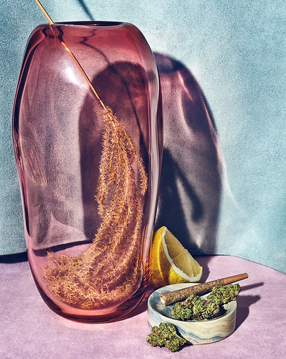 Jess Anderson Toronto Props Interiors and Still Life Styling - Product Styling for Robinsons Cannabis with Clea Forkert and Matthew Boyd Photos Graydon Herriott Helle Mardahl Bon Bon Mega in Apricot Punch available from Goodroom