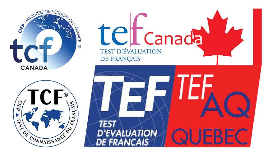 TCF TEF.jpg