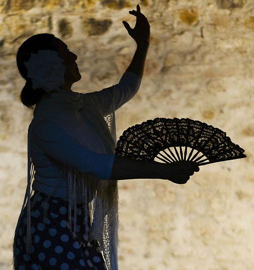 Frau Schatten mit Fan