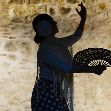 Woman Shadow with Fan